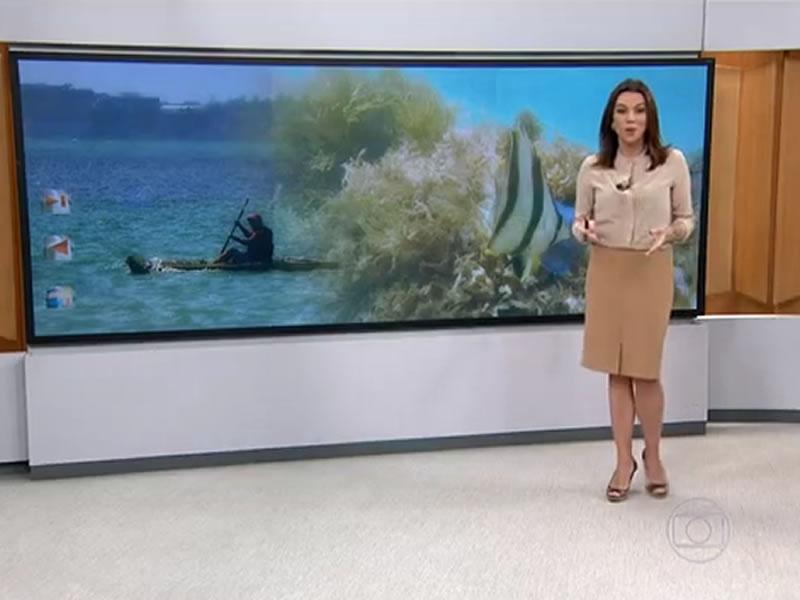 Praia de João Pessoa ganha o apelido de 'Caribessa'